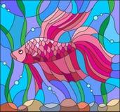 Witraż ilustracja z czerwoną bój ryba Obrazy Royalty Free