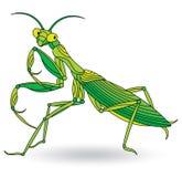 Witraż ilustracja z modliszką, insekt odizolowywający na białym tle ilustracji