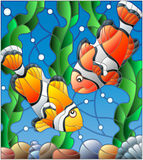 Witraż ilustracja z parą błazen ryba na tle woda i algi Obraz Stock