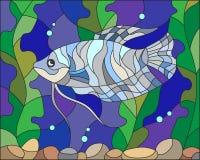 Witraż ilustracja akwarium ryba Zdjęcia Stock