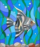 Witraż ilustracja akwarium ryba skalarami Zdjęcie Royalty Free