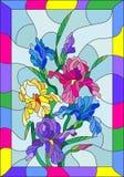 Witraż ilustracja z barwionymi irysami w jaskrawej ramie Obrazy Stock