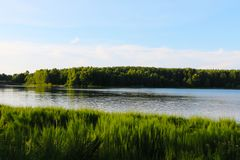 _Witrussisch landschap blauw bewolkt hemel en groen tarwe gebied stock fotografie