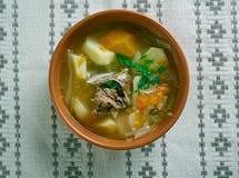 Witrussische traditionele soep stock foto's