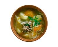 Witrussische traditionele soep stock afbeelding