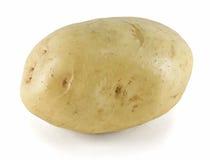 Witte Aardappel Stock Afbeeldingen