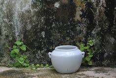 Witte aarden jarr en vuile muur royalty-vrije stock foto