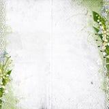 Witte achtergrond met lelietje-van-dalen Stock Foto