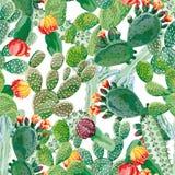 Witte achtergrond van het cactus de naadloze patroon royalty-vrije illustratie