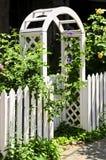Witte as in een tuin Stock Fotografie