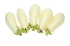 Witte Aubergine Royalty-vrije Stock Foto