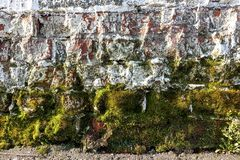 Witte bakstenen muur Ruw metselwerk Mos, korstmos bij de bodem van de muur Van Achtergrond grunge textuur stock foto