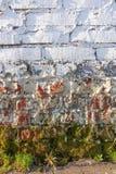 Witte bakstenen muur Ruw metselwerk Mos, korstmos bij de bodem van de muur Van Achtergrond grunge textuur royalty-vrije stock afbeelding