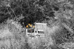 Witte bank met oranje bloemen royalty-vrije stock foto