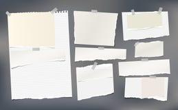 Witte, beige gescheurde horizontale document stroken, notitieboekje, notadocument Royalty-vrije Stock Foto's