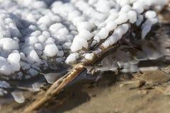 Witte bel zoals zoute vorming dichtbij de gezouten lente in Parajd, royalty-vrije stock afbeeldingen