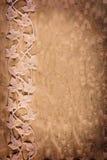 Witte bladeren Royalty-vrije Stock Afbeelding