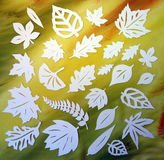 Witte bladeren. Document knipsel. Royalty-vrije Stock Afbeelding