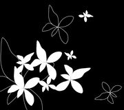 Witte Bloem en Vlinder op Zwarte achtergrond Stock Afbeelding