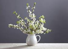 Witte bloemen in de kruik Stock Afbeelding