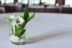 Witte bloemen, groene bladeren en witte die rotsen in vaas worden verfraaid Stock Foto