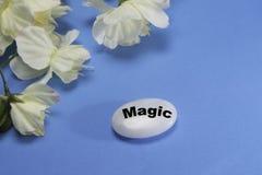 Witte bloemen met een steen die magisch afschildert royalty-vrije stock fotografie