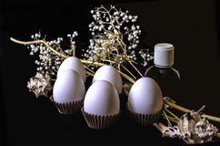 Witte bloemen met witte eieren en kleine zwarte fles en zeeschelpen op een zwarte achtergrond Royalty-vrije Stock Foto's