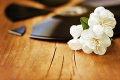 Witte bloemen op een gebroken verslag Royalty-vrije Stock Foto