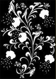 Witte bloemen op zwarte Stock Foto