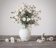 Witte bloemen in vaas stock afbeeldingen