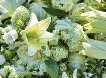 Witte bloemen voor begrafenis royalty-vrije stock afbeelding