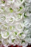 Witte bloemenachtergrond Royalty-vrije Stock Afbeeldingen