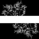 Witte bloemenschets op een zwarte achtergrond stock illustratie