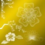 Witte bloemornamenten Stock Afbeelding