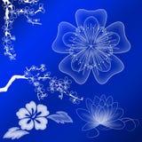 Witte bloemornamenten Stock Afbeeldingen