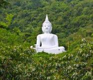 Witte Boedha op de berg Stock Foto's