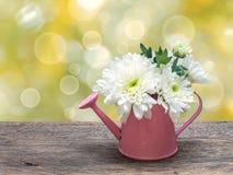 Witte boeketbloemen in gieter stock fotografie