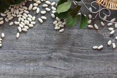 Witte bonen als symbool het gezonde eten Royalty-vrije Stock Afbeelding
