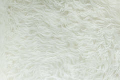 Witte bonttextuur, close-up royalty-vrije stock foto