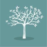 Witte boom Stock Afbeelding