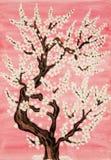 Witte boom in bloesem, het schilderen Stock Afbeeldingen