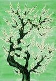 Witte boom in bloesem, het schilderen Stock Fotografie