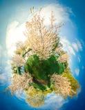 Witte boom in stad 360 van Riga VR-Hommelbeeld voor Virtuele werkelijkheid, Panorama Royalty-vrije Stock Foto