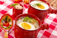 Witte borscht met mierikswortel royalty-vrije stock foto