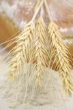 Witte brood en aren van tarwe en tarwemeel Royalty-vrije Stock Foto