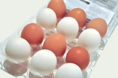 Witte Bruine eieren Stock Foto's