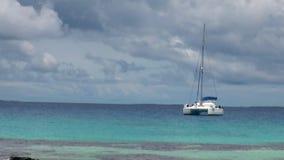 Witte catamaran in oceaan stock video