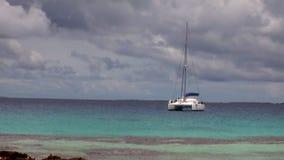 Witte catamaran in oceaan stock videobeelden