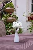 witte chrysant in een witte vaas royalty-vrije stock afbeeldingen