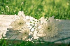 Witte chrysanten en een oud boek van gedichten royalty-vrije stock foto